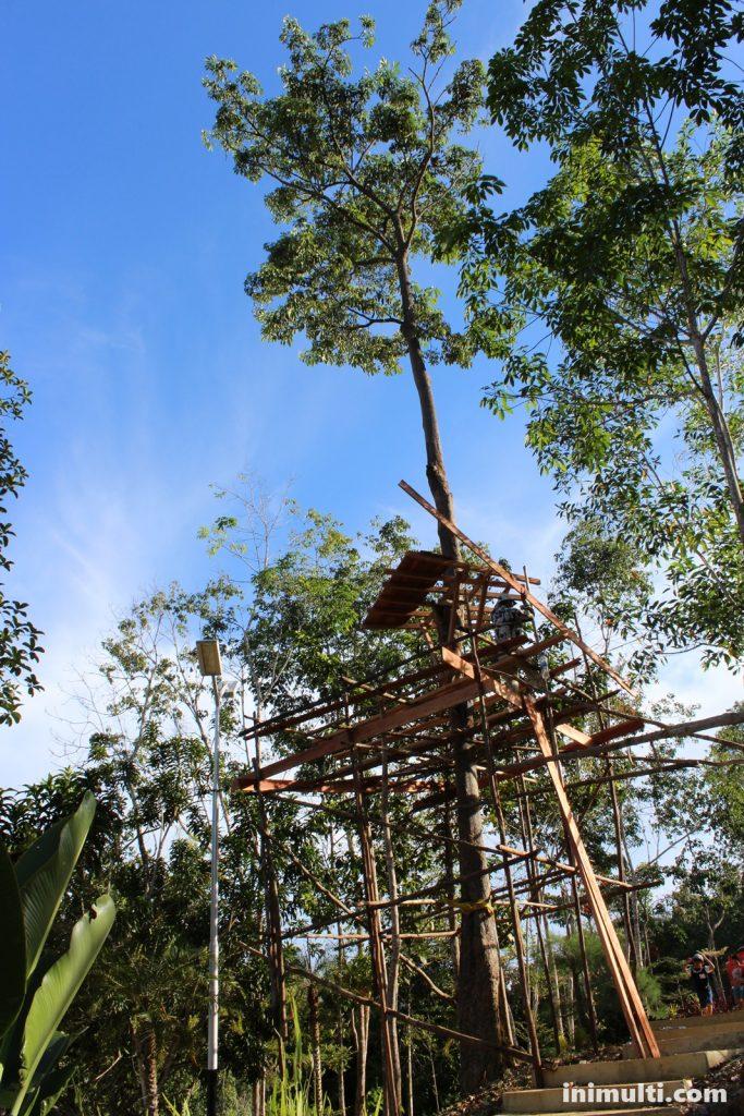 wisata rumah pohon di taman gunung sari singkawang